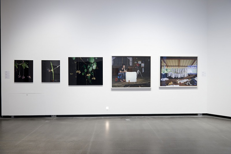 Installation View at Kunsthalle St. Annen, Lübeck, Germany 2020