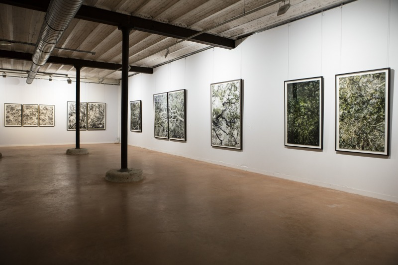Installation view at Chaumont-Photo-sur-Loire, France, 2018