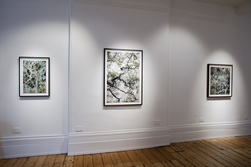 Installation view at Purdy Hicks, London 2018