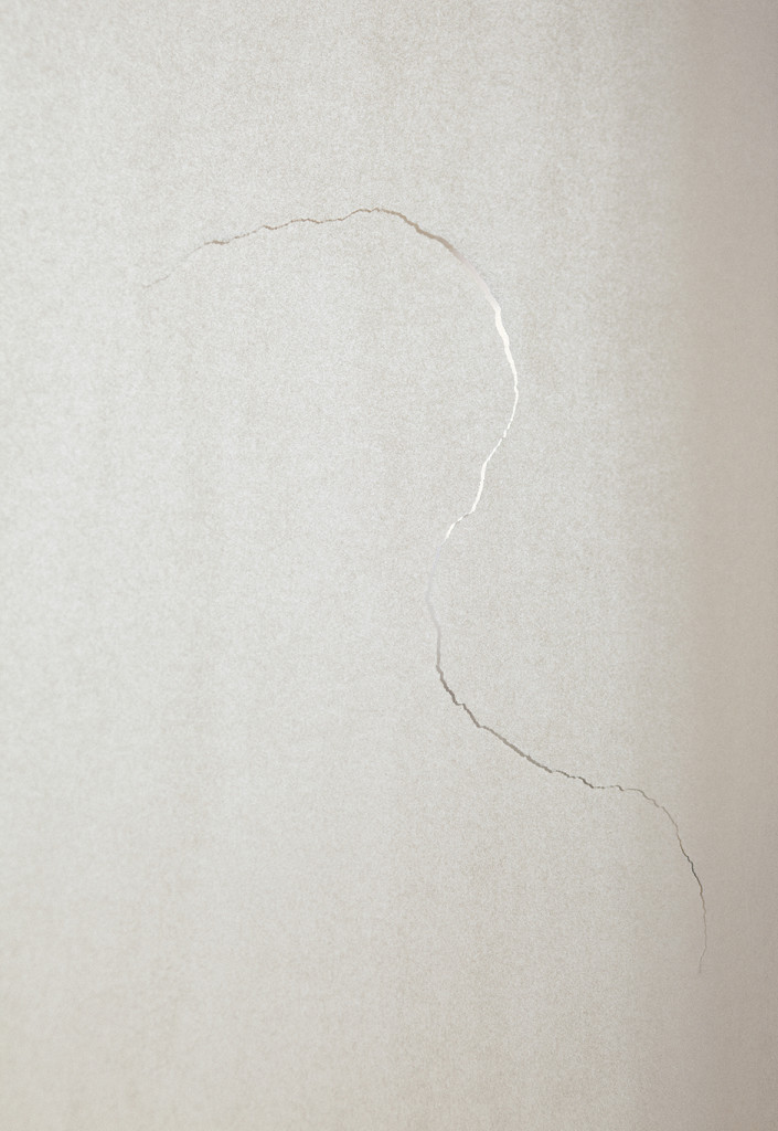 Light (profile), 2012