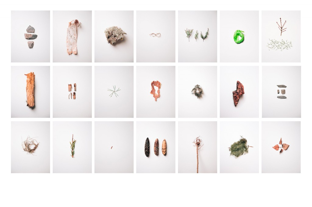 PICKED FRAGMENTS #1-21, 2016
