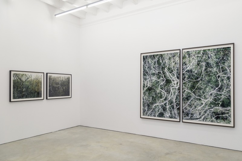 Santeri Tuori | Time Is No Longer Round, Installation view at Persons Projects, 2020